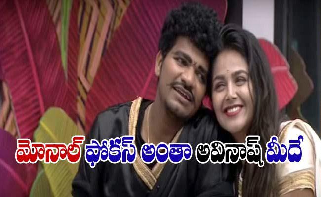 Bigg Boss 4 Telugu: Will Monal Gajjar Change Avinash As Good Human - Sakshi