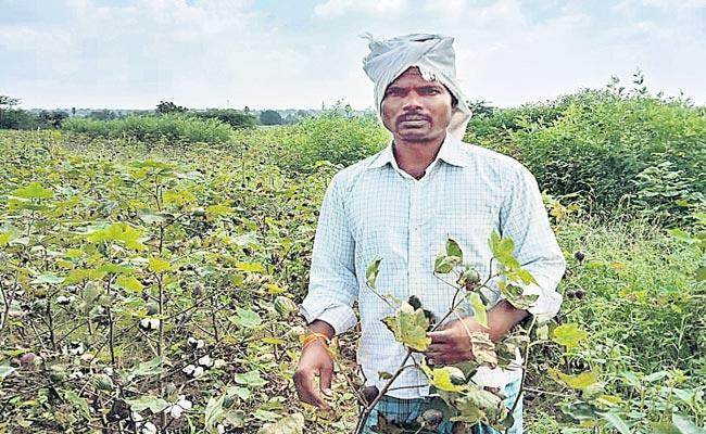 Private Teachers Who Became Farm Laborers Due To Corona - Sakshi