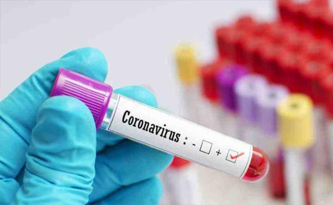8 Lakhs Above Coronavirus Cases Recorded In Andhra Pradesh - Sakshi