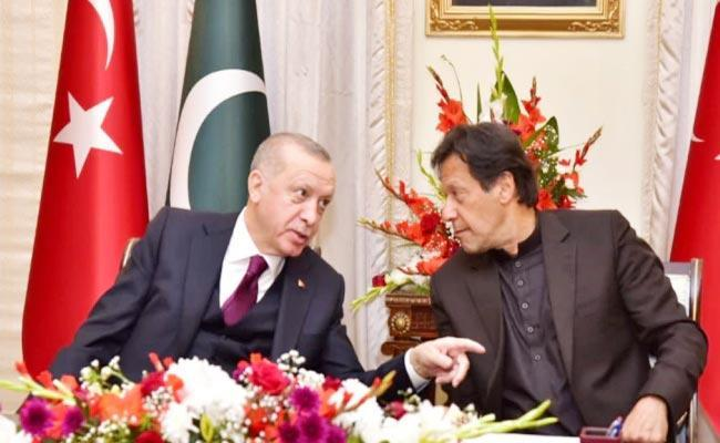 Turkey Supports Removing Pak From FATF Grey List - Sakshi
