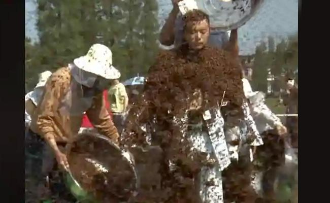 Man Covers Himself With Over 6 Lakh Bees, Bags Record Video viral - Sakshi