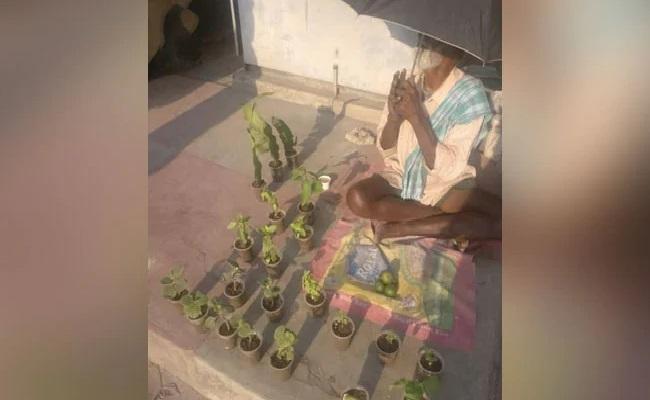 Help Pours In Elderly Man Sells Plants On The Roadside In Bengaluru - Sakshi