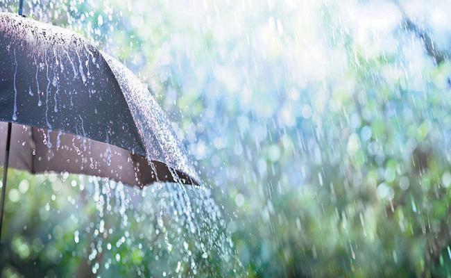 Two days of rains in AP - Sakshi