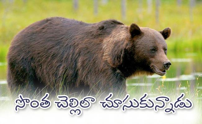 Luba And Terdi Yomcha Bear And Human Brother And Sister Relation - Sakshi