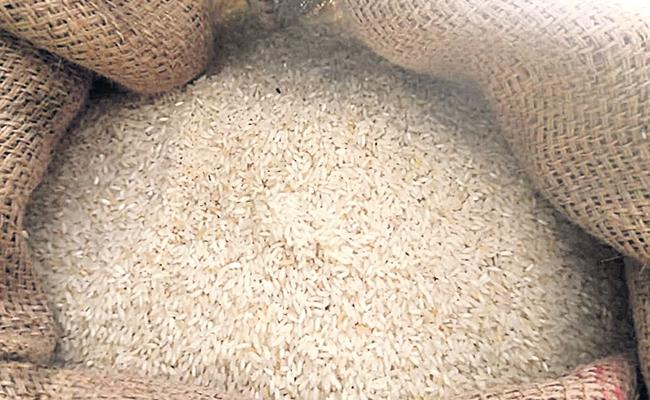 Telangana : Midday Meal Rice Damaged In Government Schools - Sakshi