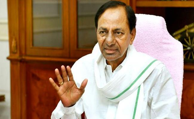 CM KCR Hold Review Meeting With TRS MLAs Over MLC Elections - Sakshi