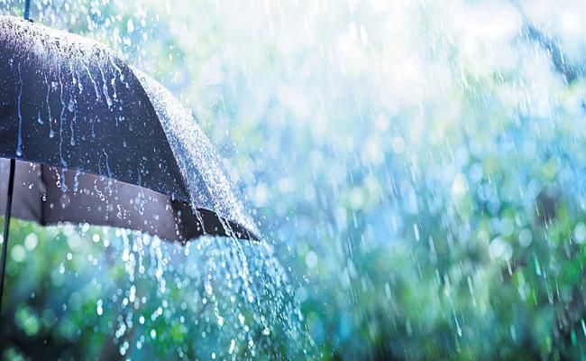 Meteorological Department officials said there was a possibility of moderate to heavy rains in AP - Sakshi