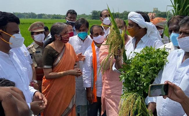 Nirmala Sitharaman Discussion With Agricultural Experts On Agricultural Bills - Sakshi