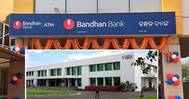 Bandhan Bank- Cadila healthcare jumps - Sakshi