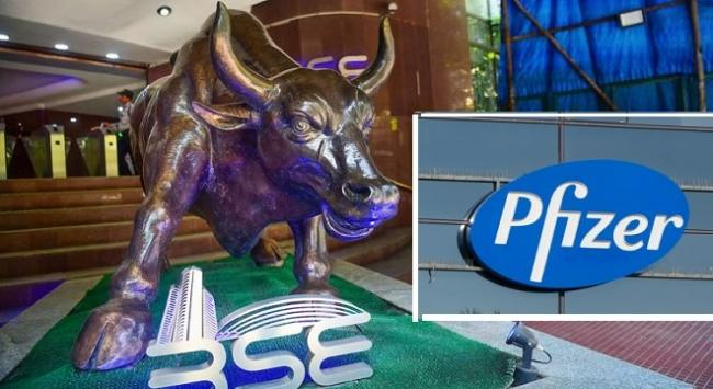 Sensex @ 43,000 mark record- Pfizer ltd hits new high - Sakshi
