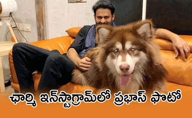 Prabhas And Charmme Kaur Doggo In Same Pic Wins Instagram - Sakshi