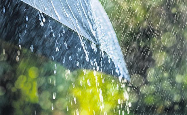 Heavy Rain Forecast For South Coastal Andhra - Sakshi