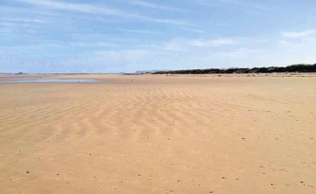 Heavy Sand Deposits In Barrages - Sakshi