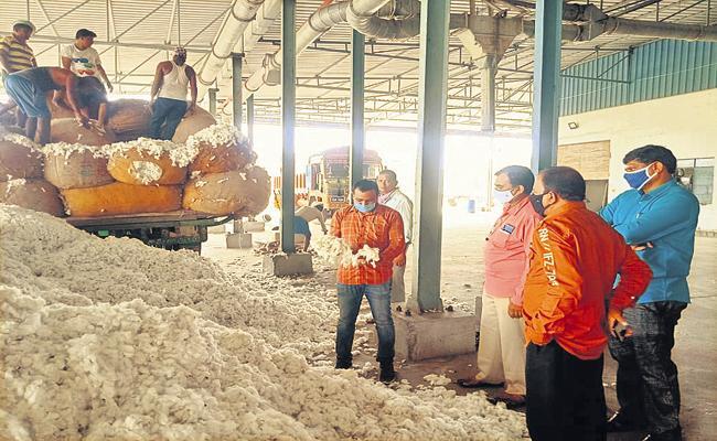 Cotton Purchases Begin In AP - Sakshi