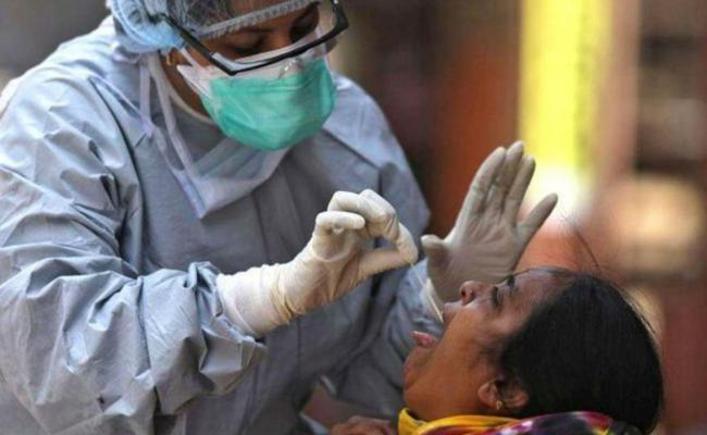 1316 New Coronavirus Positive Cases Recorded In AP - Sakshi