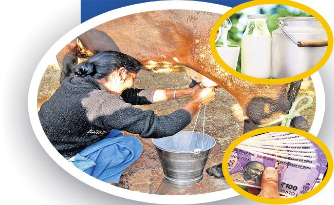Above 4 Lakh Women Applied For New Dairy Cattle - Sakshi