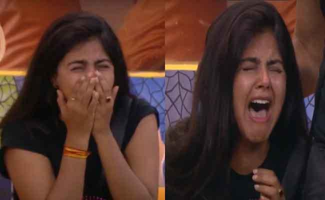 Bigg Boss 4 Telugu: All Inmates Families Came For Visit What About Monal - Sakshi