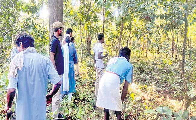 Tiger Attacked Man Escaped In Adilabad - Sakshi