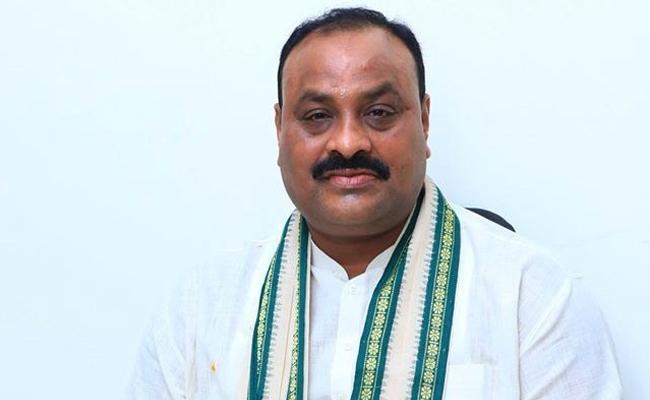 Acham Naidu Position In TDP Is Like DuDu Basavanna - Sakshi