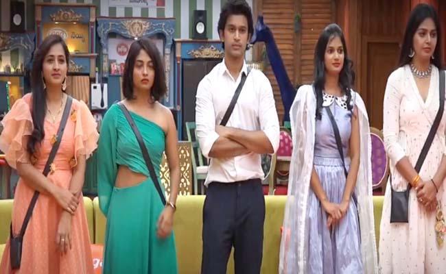 Bigg Boss 4 Telugu: Contestants Happy Dance Before Elimination - Sakshi