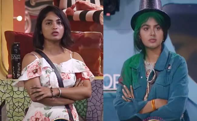 Bigg Boss 4 Telugu: Harika May Sent Monal In Nominations For Abhijeet - Sakshi