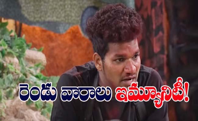 Bigg Boss 4 Telugu: Avinash Got Immunity For Next 2 Weeks - Sakshi