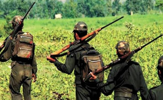 Telangana Police Searching For Maoist Secretary Hari Bhushan - Sakshi