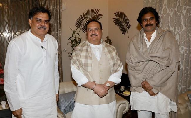 Pawan kalyan Meets BJP President JP Nadda In Delhi - Sakshi