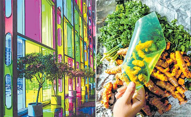 Carvey Maigue Develops Vegetable Waste Into Renewable Energy - Sakshi