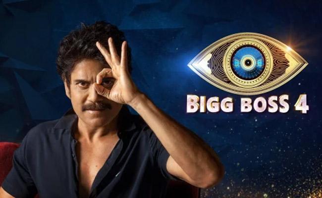 Bigg Boss 4 Telugu : 12th Week  No Elimination - Sakshi