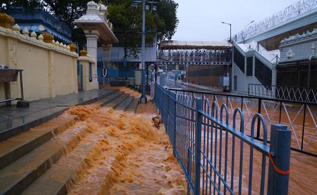 Nivar Cyclone: Temporarily Closed Srivari Stairway Due To Rains - Sakshi