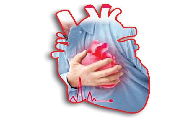 Canadian Research Team Study On Heart Problems - Sakshi