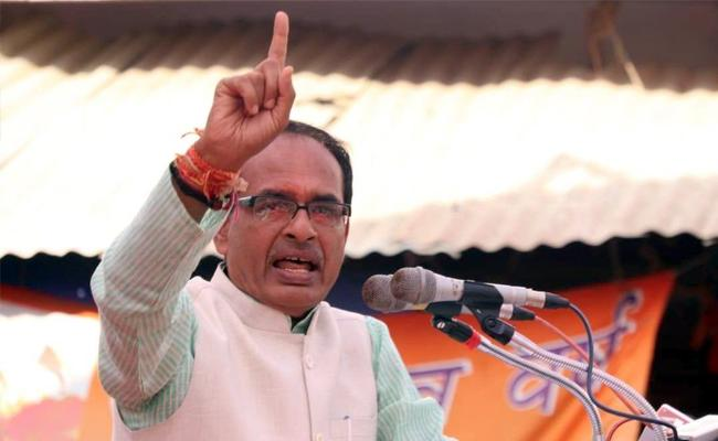 Voted For The BJP With Enthusiasm: Chouhan - Sakshi