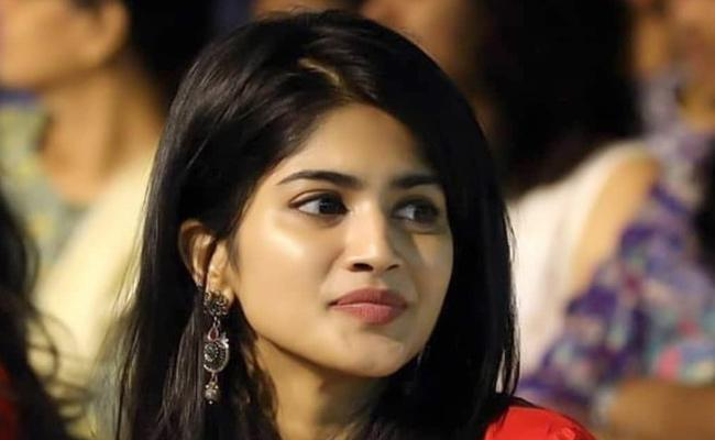 Megha Akash To Pair Up With Satyadev For A Telugu Movie - Sakshi