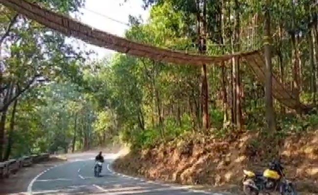 First Eco Bridge For Small Animals Built In Uttarakhand - Sakshi