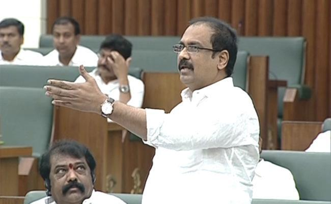 AP Assembly Session Kannababu Condemns TDP Comments In Council - Sakshi