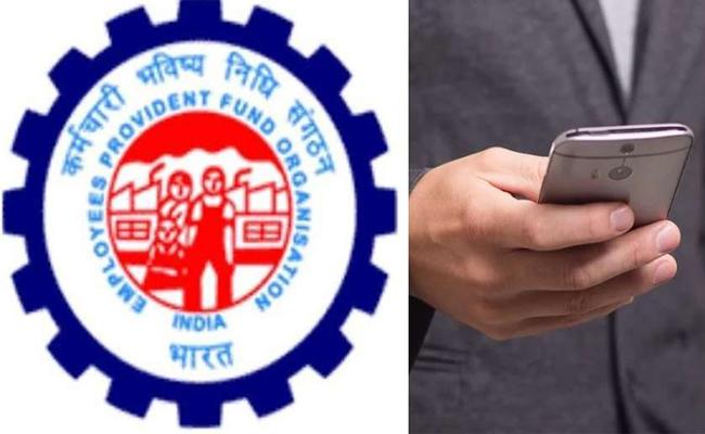 EPFO likely to credit interest on EPF for 2019-20 by December end - Sakshi