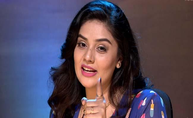 Bigg Boss 4 Telugu: Srimukhi, Geetha Madhuri, Hari Teja, Ali Meets Finalists - Sakshi