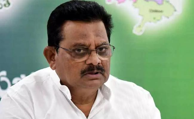 Minister Sri Ranganatha Raju Comments On Chandrababu - Sakshi