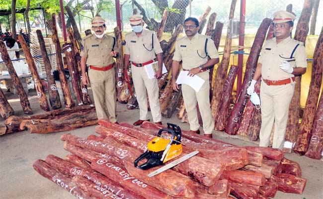 YSR Kadapa Police Operation Success On Redwood Smugglers Arrest - Sakshi