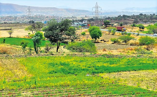 118 Acres Land For Tribal Women - Sakshi
