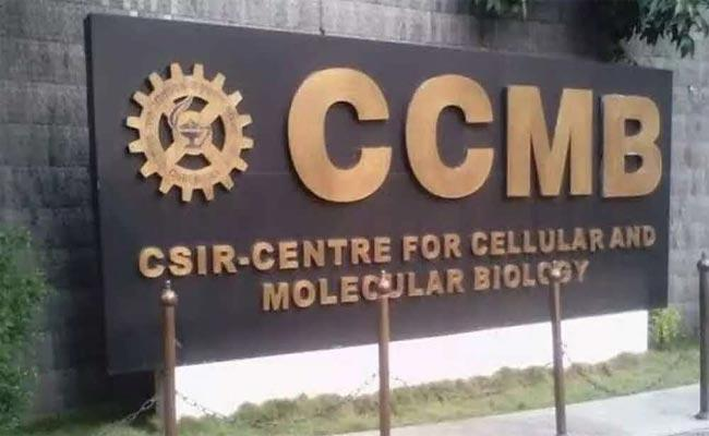 CCMB Scientist Receives Infosys Science Award This Year - Sakshi