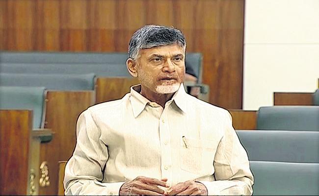 Chandrababu Naidu Comments On YSRCP Leaders - Sakshi
