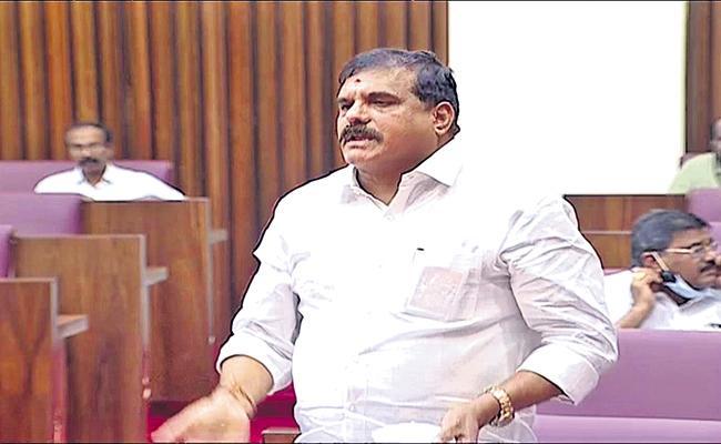 Botsa Satyanarayana Comments On TDP Leaders - Sakshi