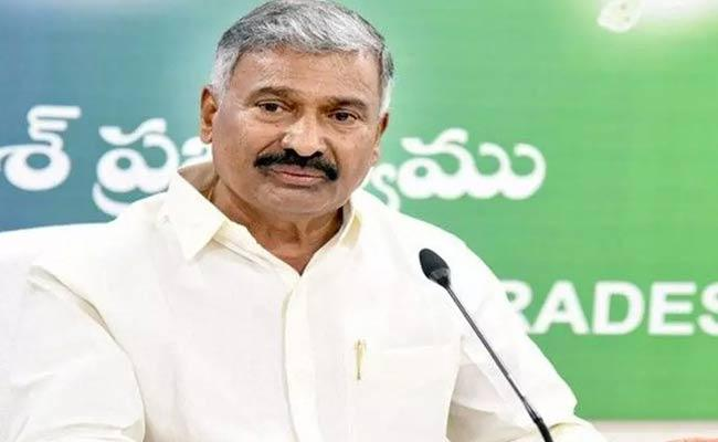 Minister Peddireddy Ramachandra Reddy Comments On Chandrababu - Sakshi