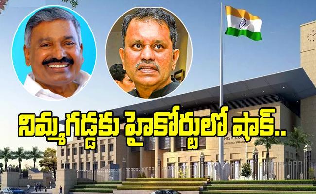AP High Court Permission To Peddireddy To Speak With Media - Sakshi
