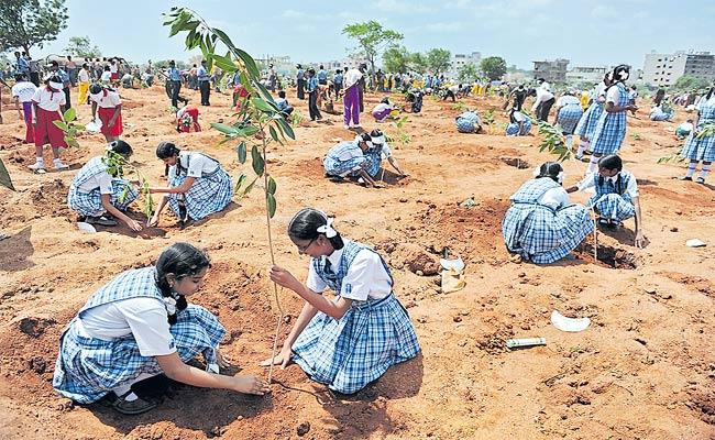Karunakar Reddy Guest Column On Tree Plantation On Occasion Of Telangana CM KCR - Sakshi