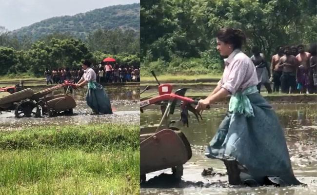 Rashmika Mandanna Turns Farmer Video Goes Viral - Sakshi
