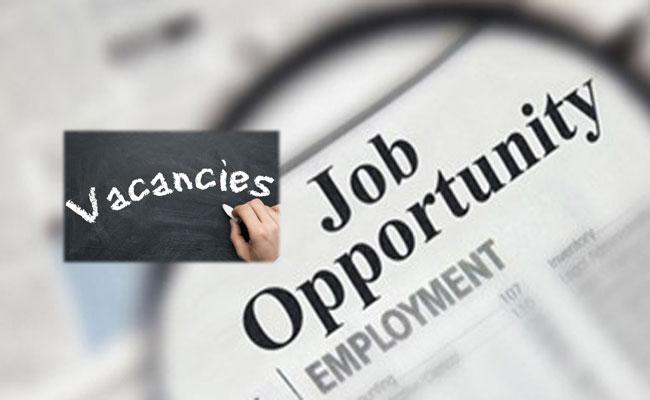 Prakasam District Collectorate Recruitment 2021: Backlog Vacancies - Sakshi