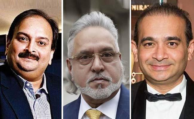 Mallya Nirav Modi Mehul Choksi Coming Back To Face Law: Sitharaman - Sakshi